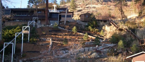 Peachland Steep Slope Riparian Restoration